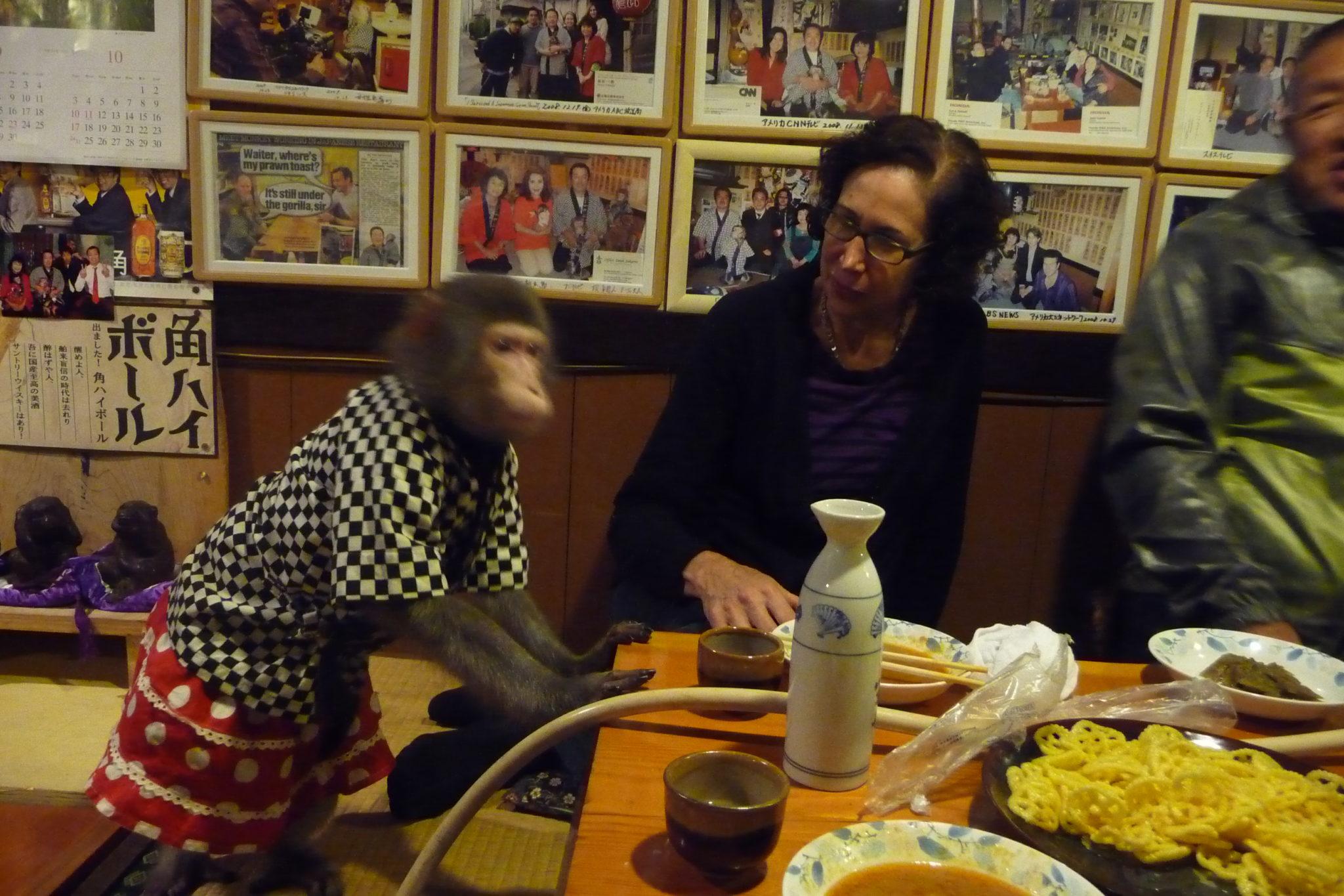 Monkey Restaurant, Japan