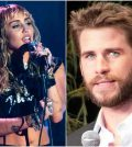 Miley Cyrus Liam Hemsworth Collage